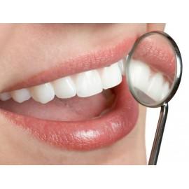 Zuby a ústa